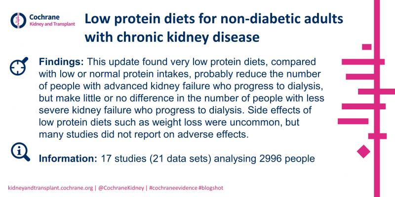 Blogshot - Low protein diets for CKD